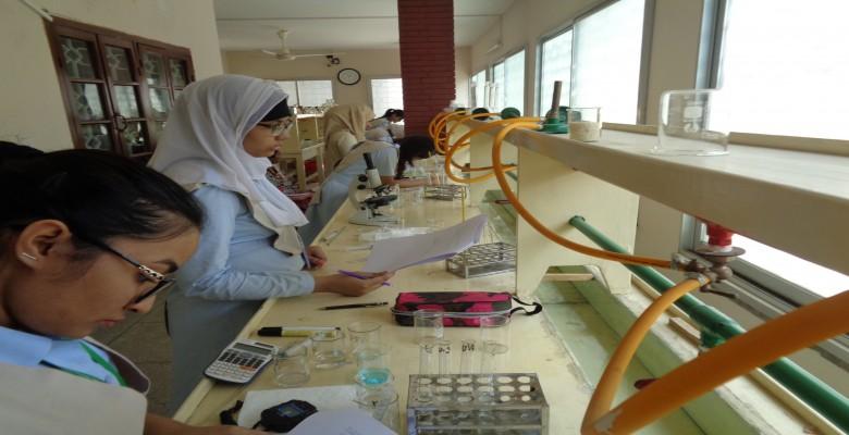 Wordbridge science-lab